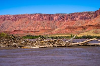Colorado River Rafting-31